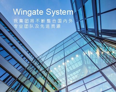 深圳市微特智能系统有限公司